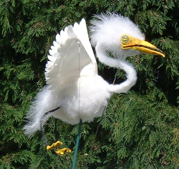 Greta the egret